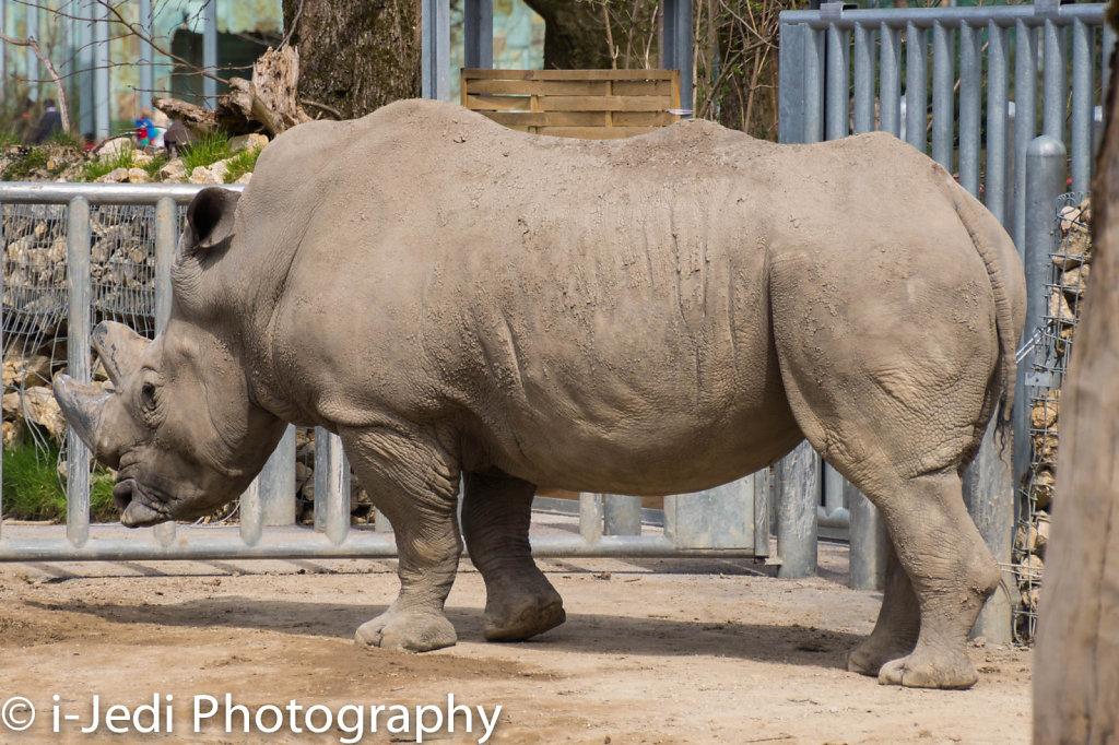 Zoo-Augsburg-8.jpg